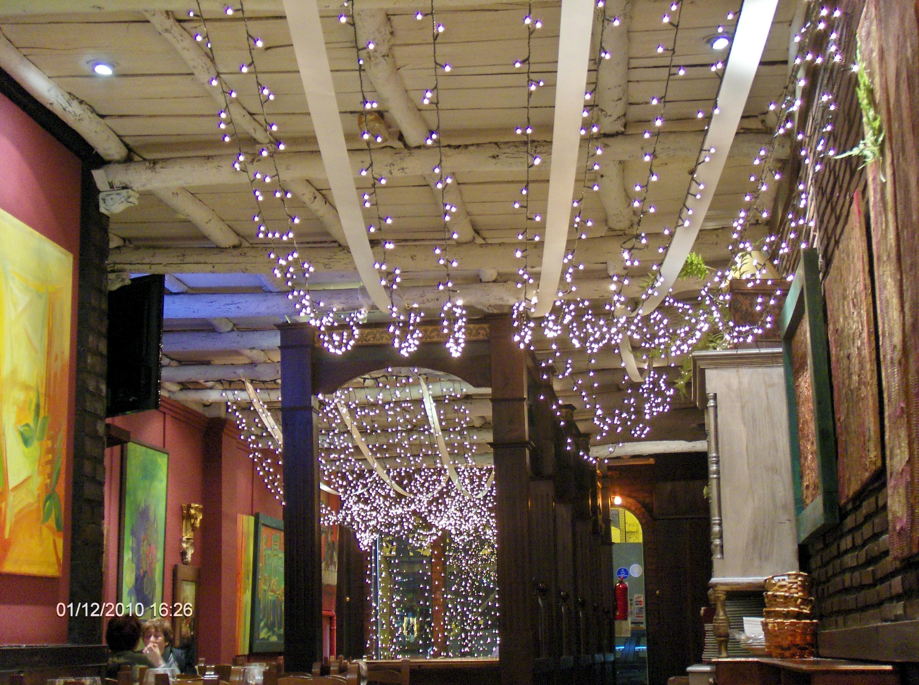 Navidad en la cuadra el invernadero - Luces para el techo ...
