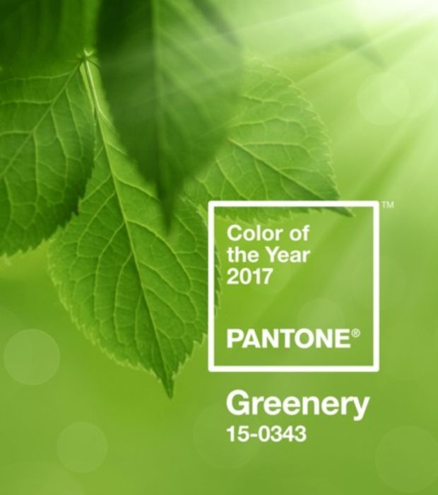 el-verde-follaje-color-del-ano-2017-segun-pantone_19641_w620