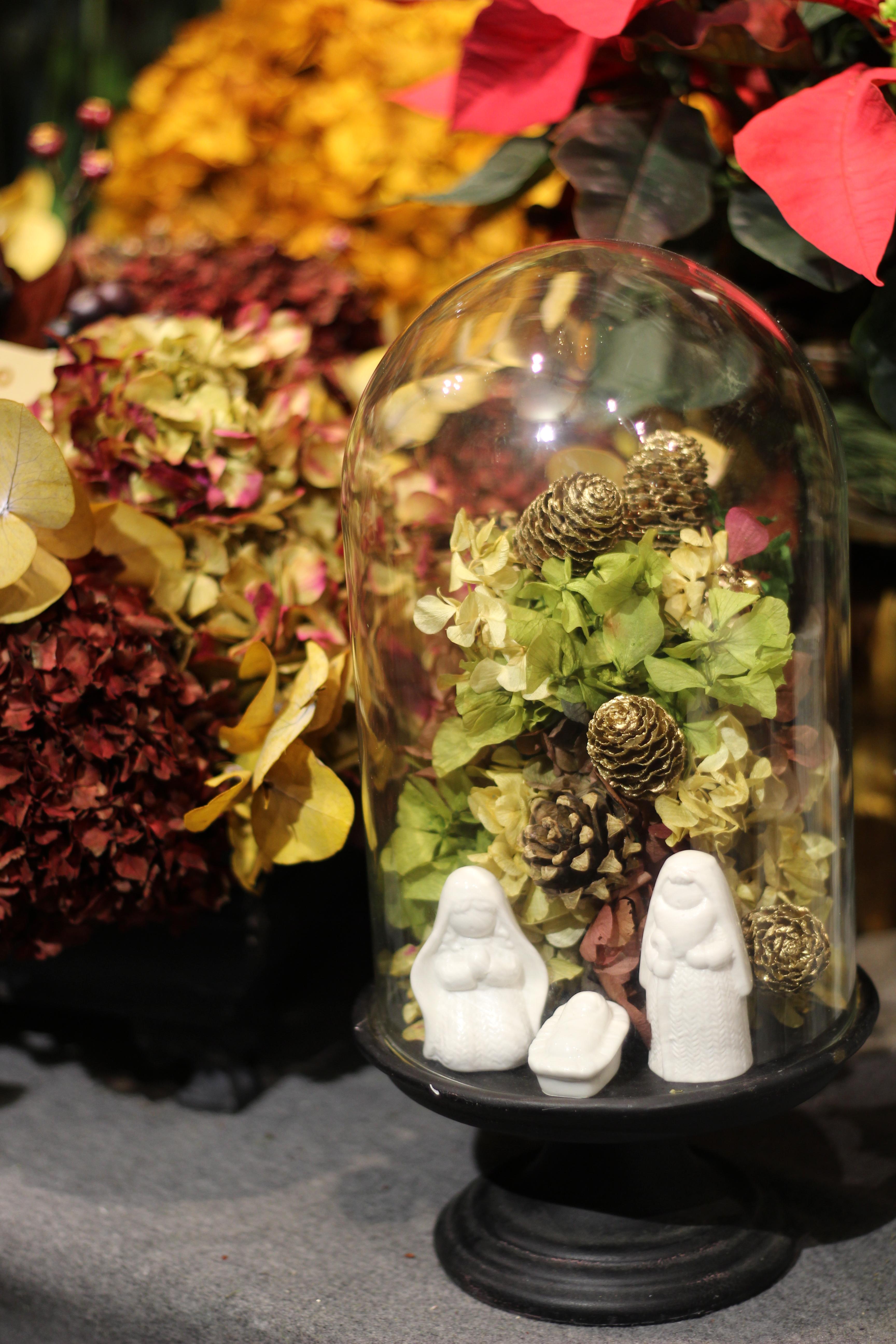 Navidad con El Invernadero