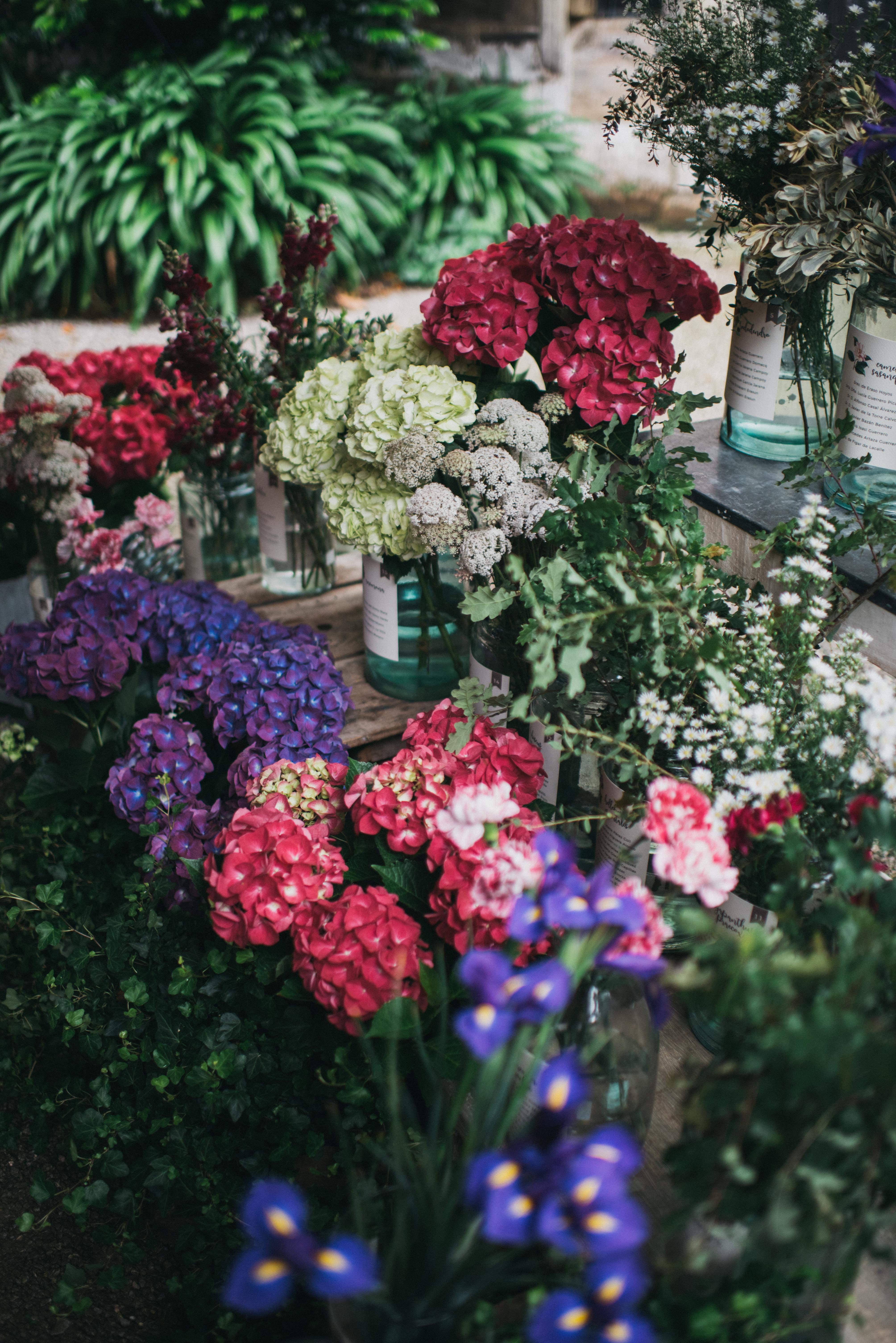 El invernadero lleno de flores